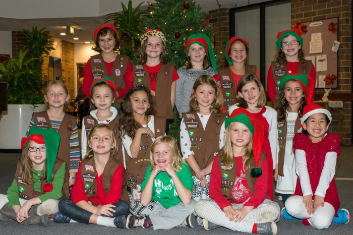 Girl Scouts Spread Christmas Cheer