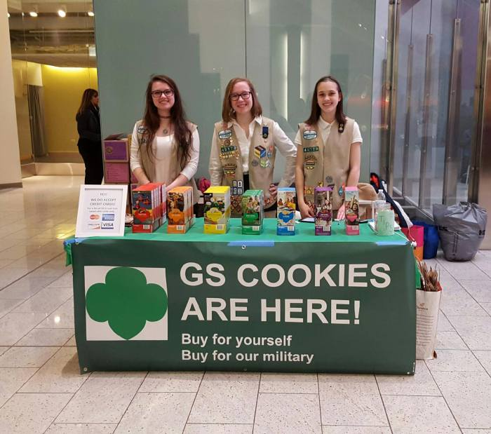 Girl Scouts Take Over Downtown Chicago During Loop Site Day