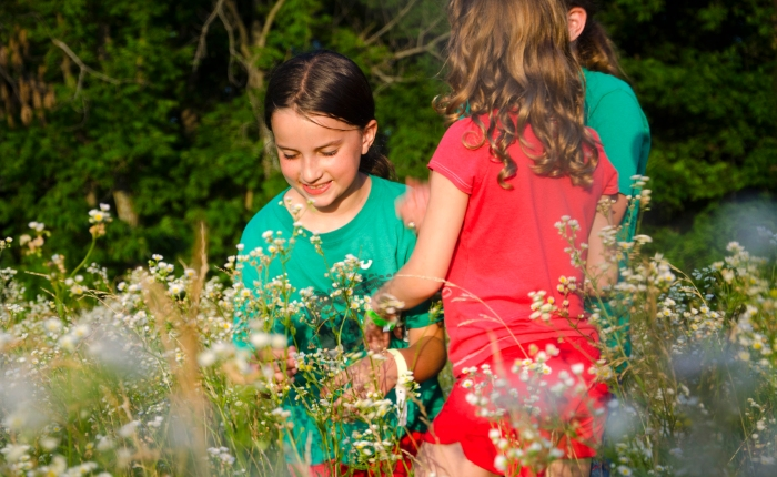 Butterfly Garden Coming to Camp GreeneWood